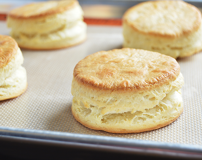 BISCUITS_29_WEB