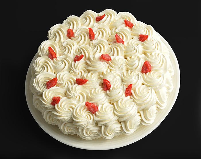 vanilla obsession cake